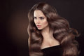 Healthy hair. Wavy hairstyle. Beautiful brunette woman model wit Royalty Free Stock Photo