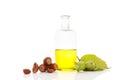 Healthy hazelnut oil Royalty Free Stock Photo