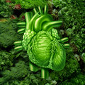 Healthy heart diet with dark leafy green vegetables at a vegetable stand as a health care and nutrition concept for eating natural Stock Photography