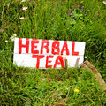 Healthy herbal tea sign in the grass saying Royalty Free Stock Photo