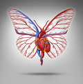 Healthy human lifestyle and cardiovascular research concept as a heart organ shaped as a butterfly with wings flying up as a Royalty Free Stock Image