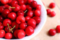 Healthy, juicy, fresh, organic cherries in fruit bowl close up. Cherries in background. Royalty Free Stock Photo