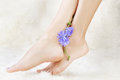 Healthy legs and flower body part shot of beautiful young woman s on white fur with blue chicory Stock Photography