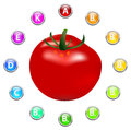 Healthy life tomato vitamins illustration Royalty Free Stock Images