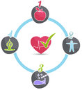 Healthy lifestyle wheel good sleep fitness food stress management leads to heart and life Royalty Free Stock Photos