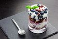 Healthy Meal with Berries and Yoghurt Royalty Free Stock Photo