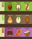 Healthy Natural Nuts Horizontal Banners