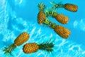 Healthy Organic Food. Fresh Pineapples In Water. Fruit. Nutritio