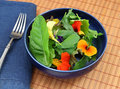 Healthy organic green salad with edible flowers Royalty Free Stock Photo