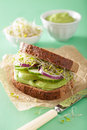Healthy rye sandwich with avocado cucumber alfalfa sprouts Royalty Free Stock Photo