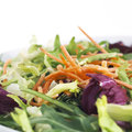 Healthy salad with carrots healthcare food Stock Image