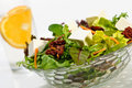 Healthy Salad With Cheese Stock Photo