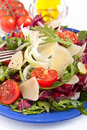 Healthy salad mix with cheese Royalty Free Stock Photo