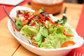 Healthy salad in a plate Royalty Free Stock Photo