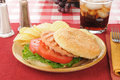 Healthy salmon burger with chips Royalty Free Stock Photos