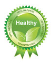 Healthy seal, illustration Royalty Free Stock Images