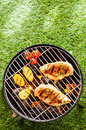 Healthy summer bbq with chicken on the coals breasts and vegetables grilling in a portable barbecue standing an a green lawn Royalty Free Stock Photos