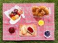 Healthy summer picnic laid out on a fresh red and white checked country cloth on green grass with croissants jam fresh fruit Royalty Free Stock Photo