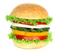 Healthy vegan burger with raw vegetables Royalty Free Stock Photo