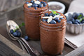 Healthy vegan chocolate chia pudding Royalty Free Stock Photo