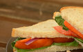 Healthy vegetable sandwich on whole grain bread Stock Photography