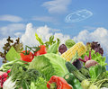 Healthy vegetarian food assortment against the blue sky Stock Photos