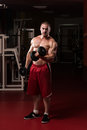 Healthy young man doing exercise for biceps bodybuilder working out dumbbell concentration curls Royalty Free Stock Image