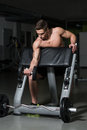 Healthy young man doing exercise for biceps muscular heavy weight with dumbbell in gym Royalty Free Stock Photos