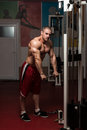 Healthy young man doing exercise for triceps bodybuilder heavy weight Stock Photography