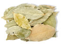 Heap bay leaves Stock Photos