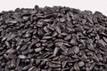 Heap of black sunflower seeds isolated on a white background Royalty Free Stock Image