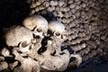 Heap of bones and skulls Royalty Free Stock Photo