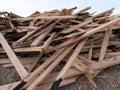 Heap of boxwood Royalty Free Stock Photos