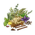 Heap of culinary herbs and spices, full color