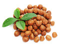 Heap of fresh shelled hazelnuts with green leaves isolated on white background closeup Royalty Free Stock Photography