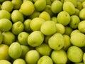 Heap group of fresh green plum Stock Photos