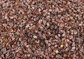 Heap of the husks. Royalty Free Stock Photo