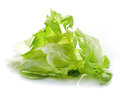 Heap of iceberg lettuce