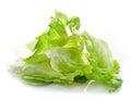 Heap of iceberg lettuce Royalty Free Stock Photo