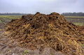Heap of manure Stock Photo
