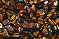 Heap many tiger eye stones suitable backgounds Royalty Free Stock Image