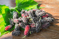 Heap of mulberry fruit and leaf on wooden table Stock Image