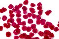 Heap Of Red Rose Petals Isolat...