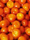 Heap of red tomatoes Stock Images