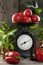 Heap of red tomatoes on old kitchen scale Royalty Free Stock Photo