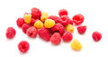 Heap of red and yellow raspberry isolated Royalty Free Stock Photo