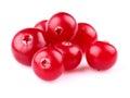 Heap of ripe cranberry Stock Photos
