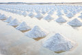 Heap of sea salt in original salt produce farm make from natural Royalty Free Stock Photo