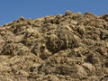 Heap of silage Royalty Free Stock Photo