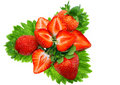 A heap of strawberries on green foliage. Isolated Stock Photography